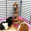 Apple Wood Chew Sticks Twigs for Small Pets Rabbit Hamster Guinea Pig Toy Newest