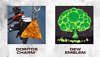 CoD Black Ops Cold War MountainDew ANIMATED EMBLEM+WEAPON CHARM-INSTANT DELIVERY